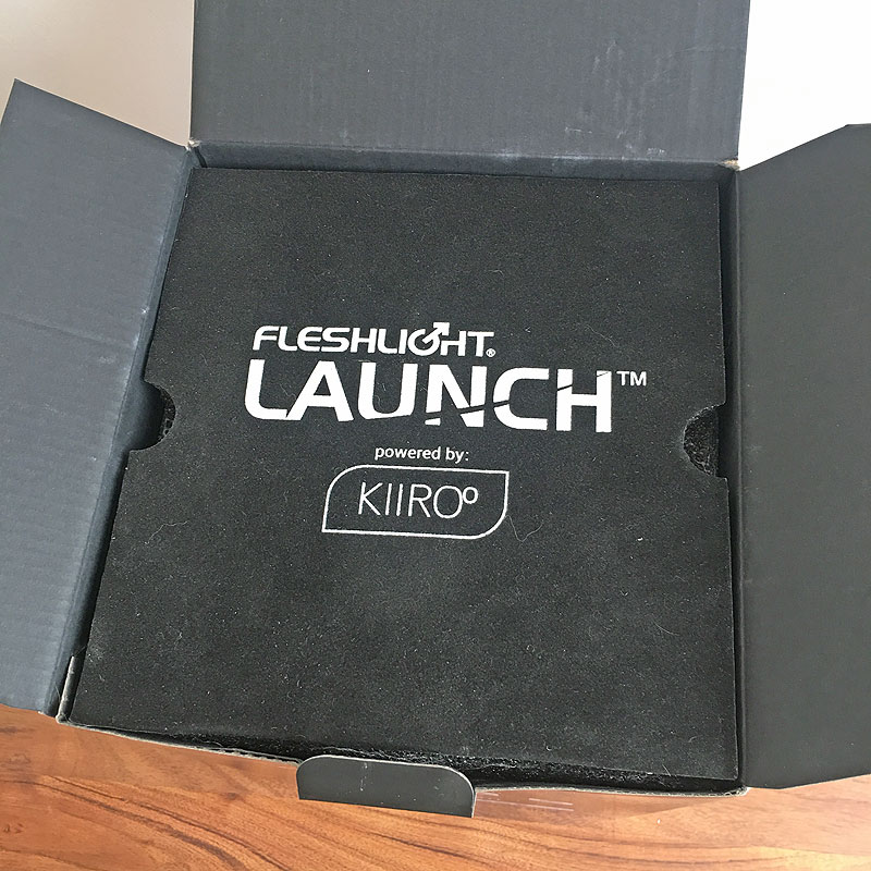Fleshlight Launch The Big Gay Review
